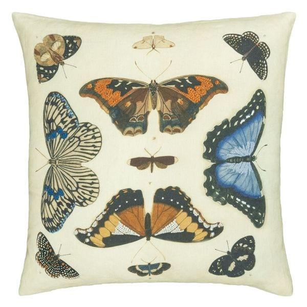 Mirrored Butterflies-Front